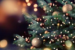 Tannenbaum Lyrics.O Tannenbaum O Christmas Tree Christmas Hq