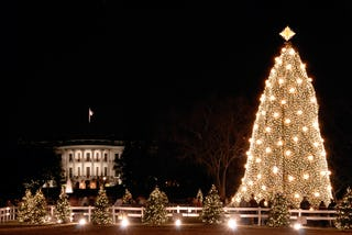 The National Christmas Tree on the White House ellipse south.