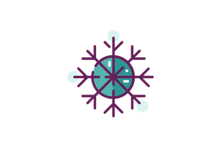 Snowflake with Eight Points