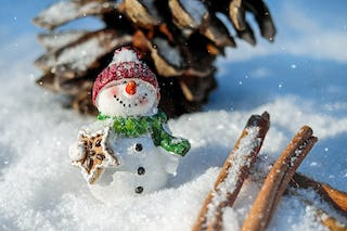 Snowman in the Snow